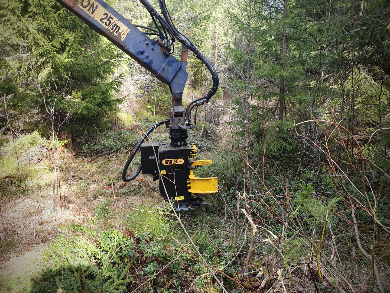 M15ex Cizalla para desramado de árboles, para excavadoras más pequeñas
